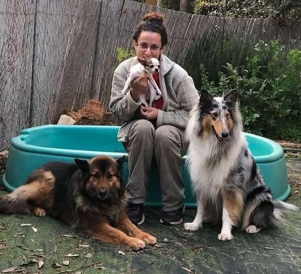 נירה איטקין - מדברים עם כלבים