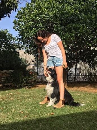 רומי ליבני מדברים עם כלבים